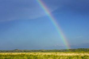 rainbow-952533_640