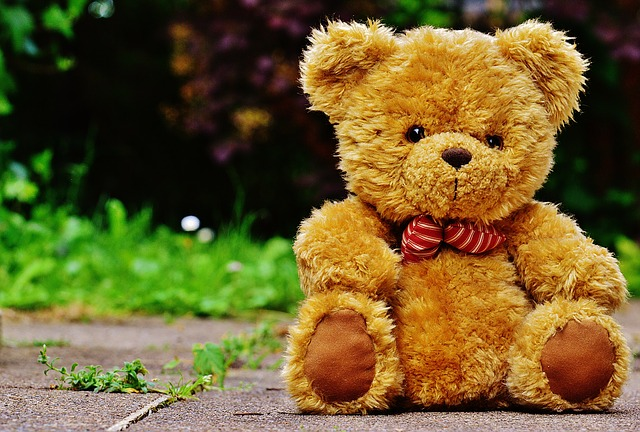 teddy-1444639_640